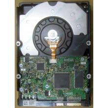 HDD Sun 500G 500Gb в Ангарске, FRU 540-7889-01 в Ангарске, BASE 390-0383-04 в Ангарске, AssyID 0069FMT-1010 в Ангарске, HUA7250SBSUN500G (Ангарск)