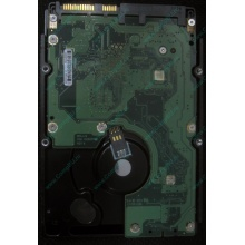 HP 454228-001 146Gb 15k SAS HDD (Ангарск)