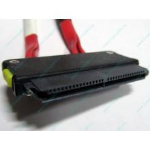 SATA-кабель для корзины HDD HP 451782-001 459190-001 для HP ML310 G5 (Ангарск)