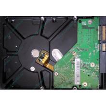 Б/У жёсткий диск 500Gb Western Digital WD5000AVVS (WD AV-GP 500 GB) 5400 rpm SATA (Ангарск)